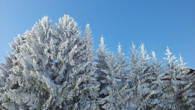 Ambiente Winter